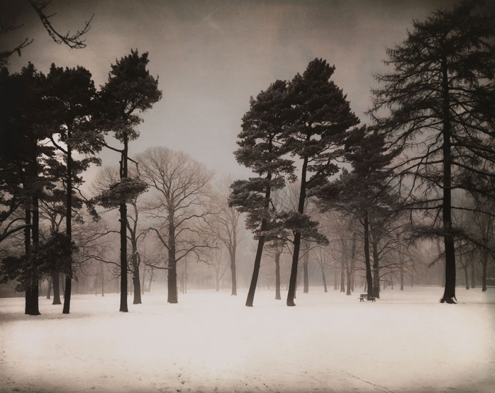August Sander - Stadtwald (Urban Forest), c. 1938 - © Images is copyright of their owners, assignees or others