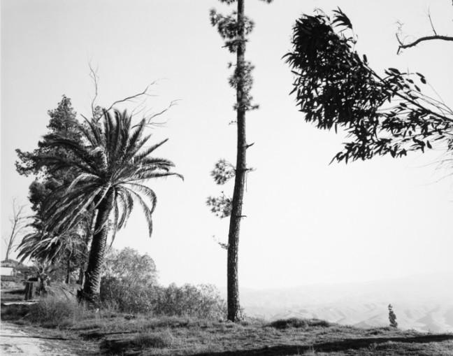 Robert Adams - Edge of San Timoteo Canyon, San Bernardino, California, 1978 - © Robert Adams