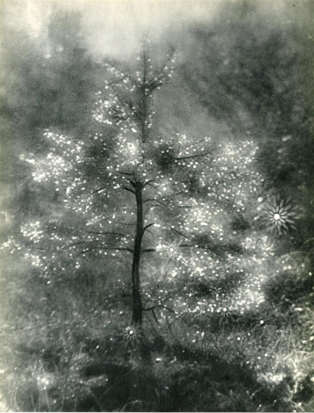 Josef Breitenbach - Illuminated Tree, c.1939 - ©Image is copyright of the respective owners, assignees or others