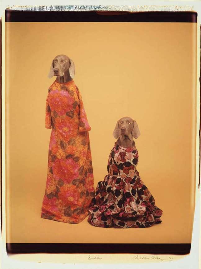 William Wegman - Dolls, 1991 - © William Wegman