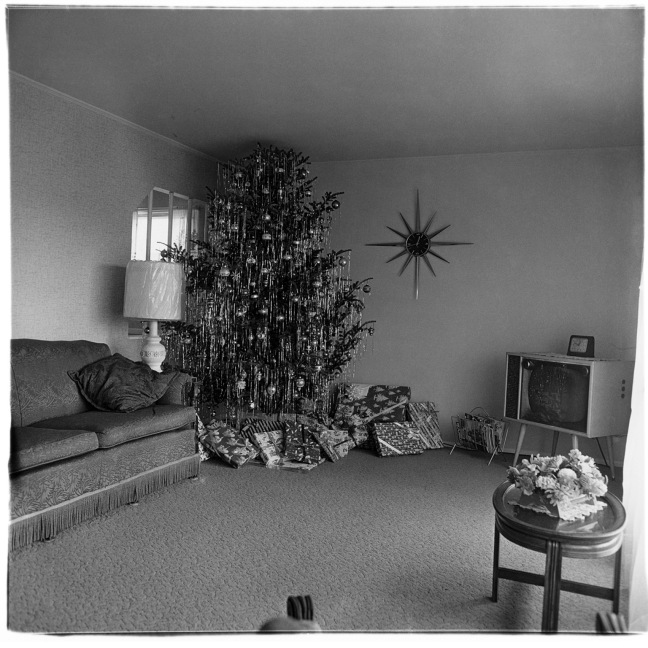 Diane Arbus, Xmas tree in a living room, Levittown, L.I., 1963 - ©Image is copyright of the respective owners, assignees or others