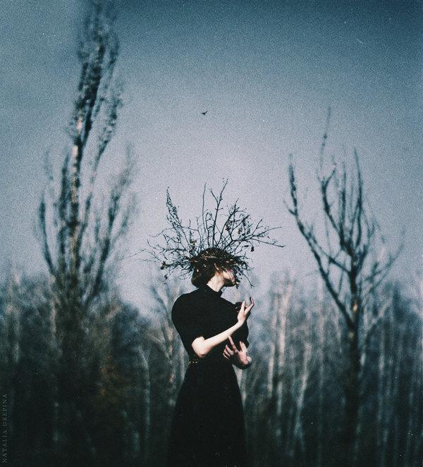 Natalia Drepina, The Deepening Twilight - © Natalia Drepina
