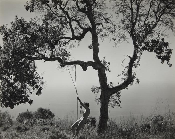 Edward Weston, Winter Idyll, 1945.